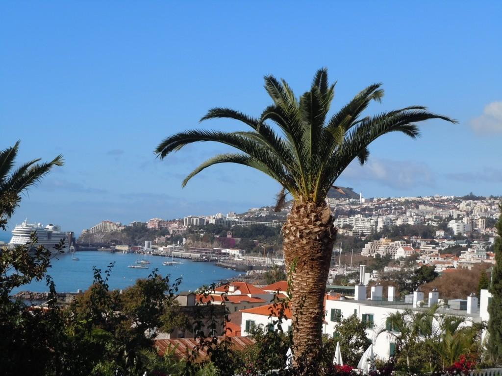 Funchal, février 2013
